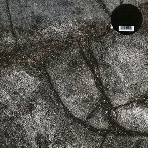 Boss Hog - Brood X (LP, US)